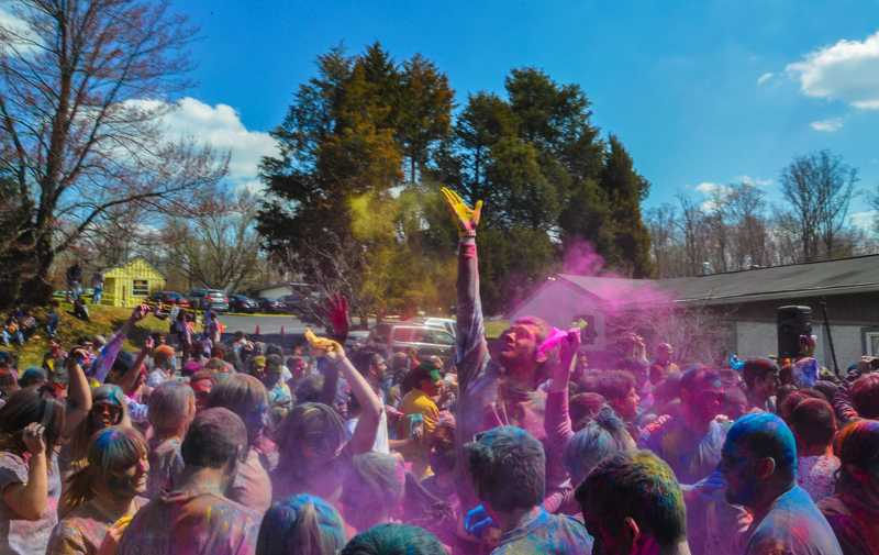 holi celebration with designs essay help