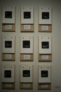 """A display of """"9 works"""" by artist John Carr"""