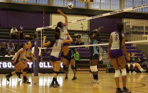 Sophomore Yesenia Mora, 2, attacks the ball. (Photo Credit: Adriano cassoma)