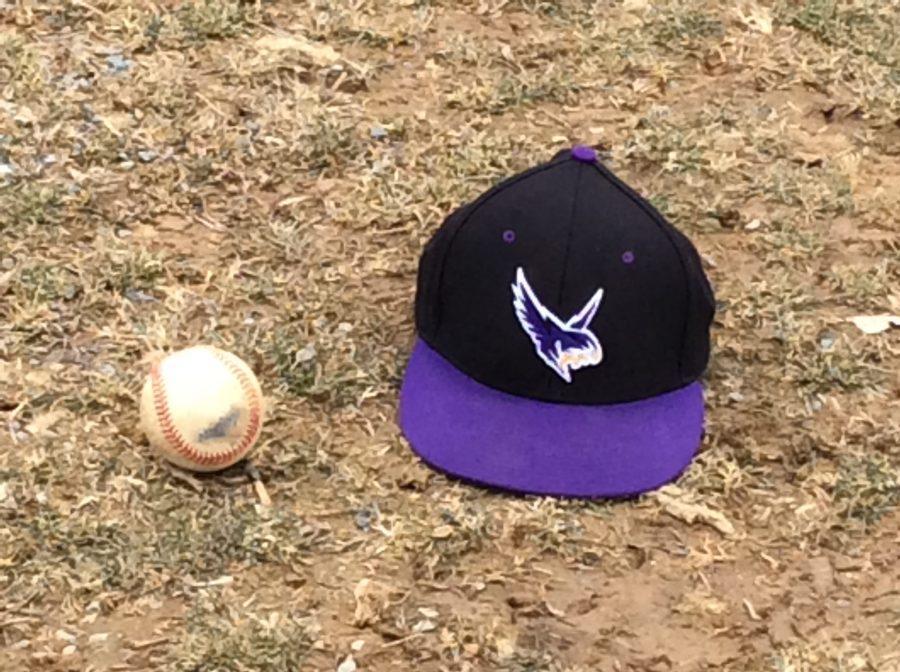 raptors-baseball-spring-training