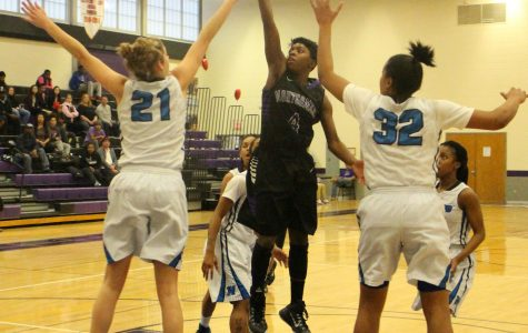 MDJUCO Tourney: Raptors Fall Short Against Harford CC, Eliminated