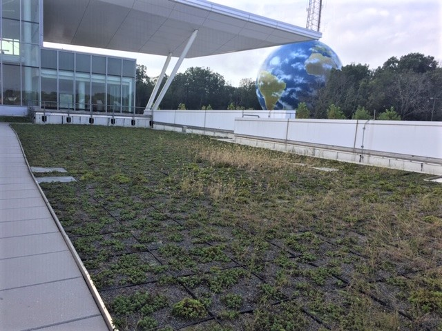 The green roof of the BE building on the Germantown campus