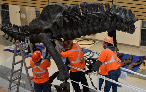 Workers installing the skeleton.