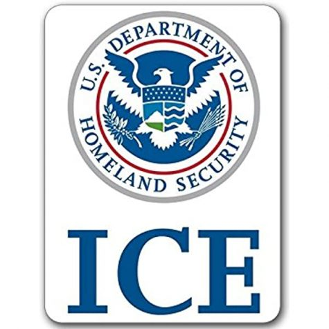 Shocked but not Surprised: ICE Forced Sterilization and the US